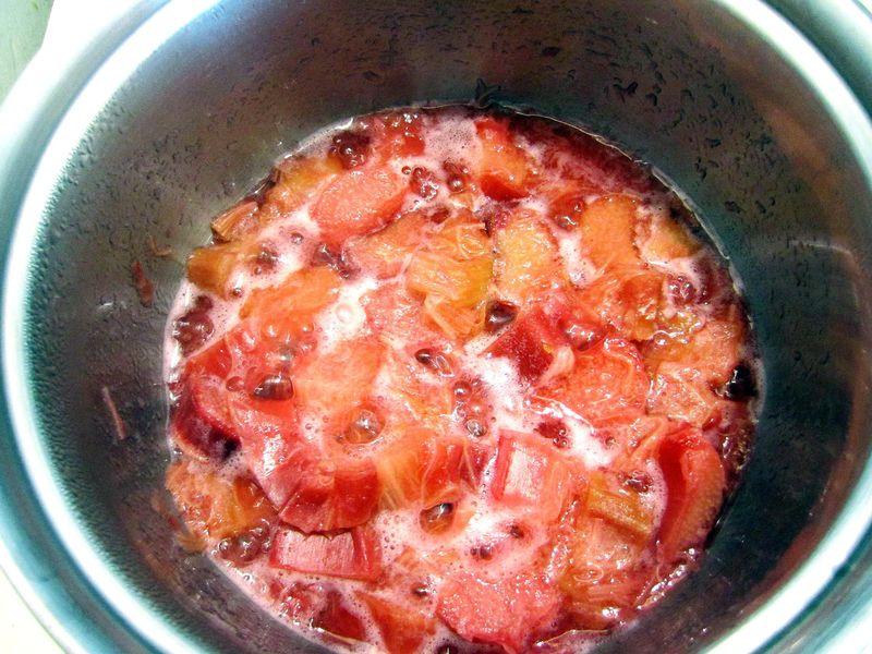 Rhubarbpopsicle2